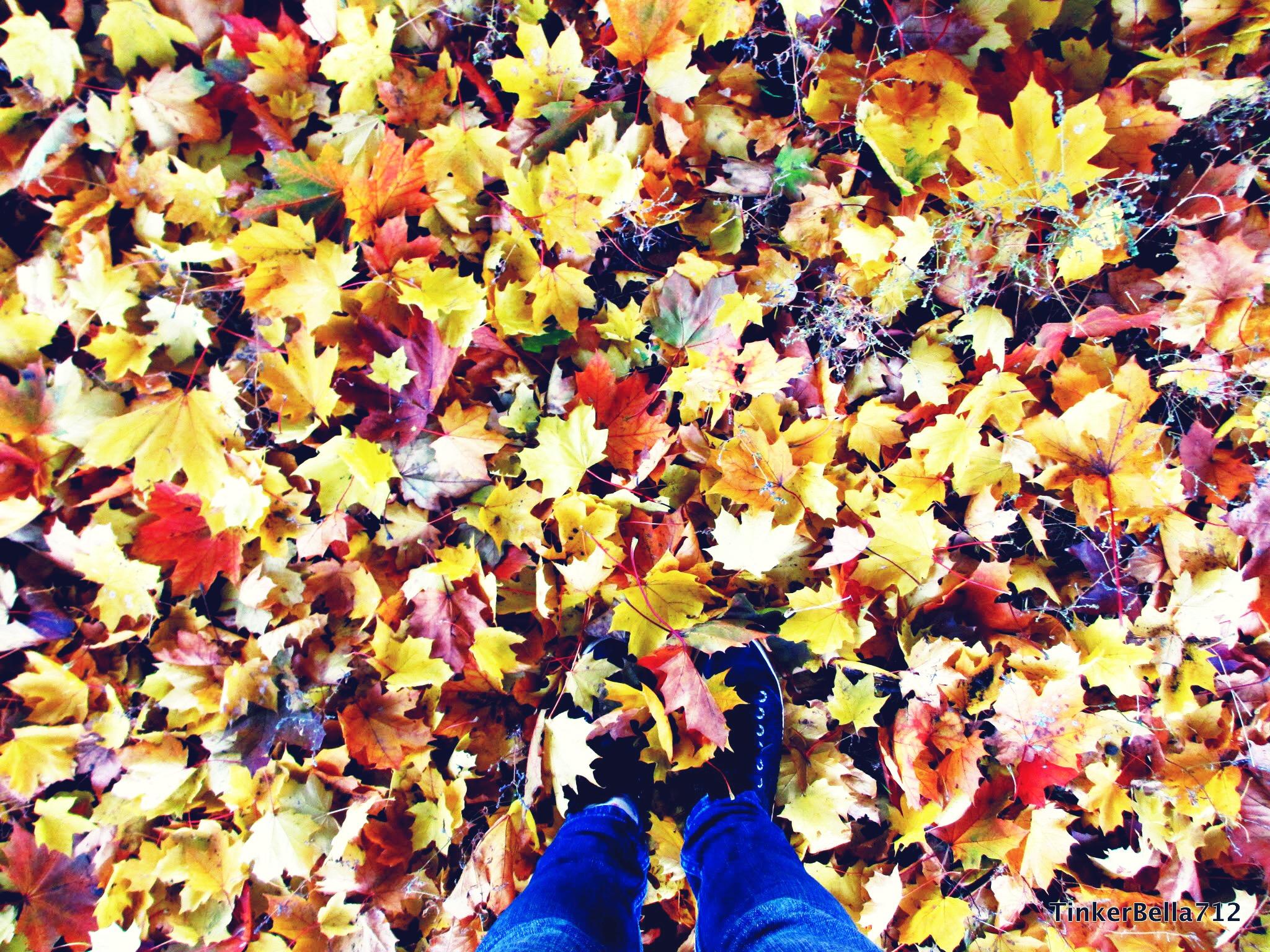 Laubhaufen mit Füßen - Fotoidee für den Herbst