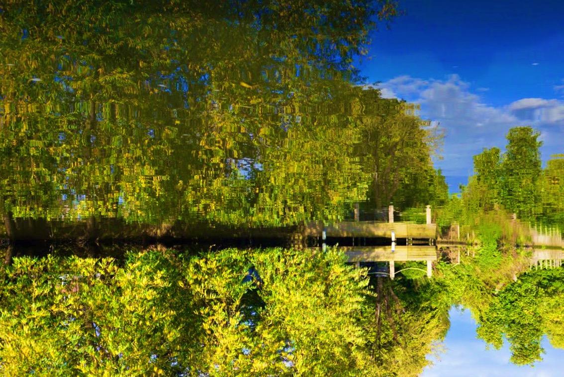Spiegelung und Reflexion im Wasser - Fotoidee für den Herbst